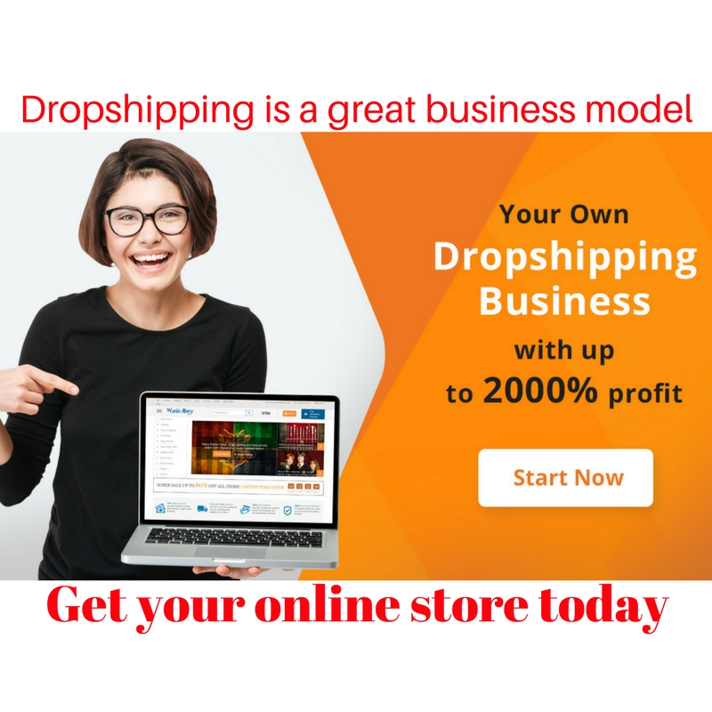 how to start dropshipping business